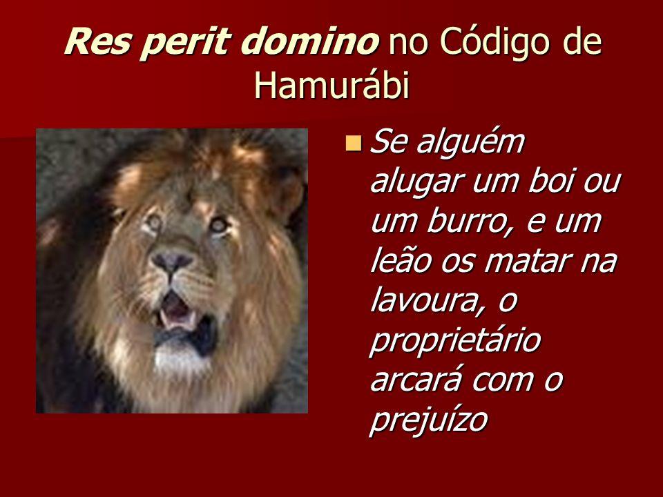 Res perit domino no Código de Hamurábi Se alguém alugar um boi ou um burro, e um leão os matar na lavoura, o proprietário arcará com o prejuízo Se alguém alugar um boi ou um burro, e um leão os matar na lavoura, o proprietário arcará com o prejuízo