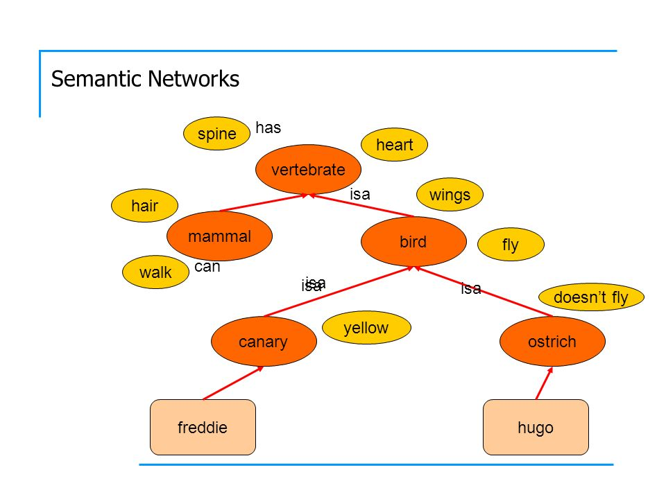 Semantic Networks Can freddy fly.Does hugo have wings.