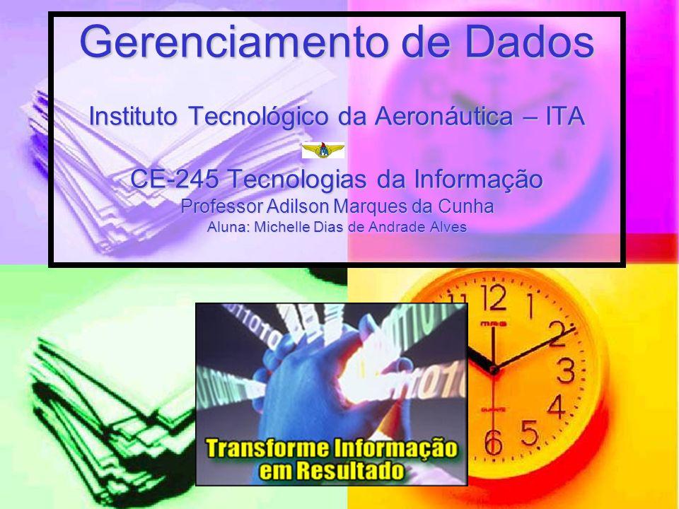 Gerenciamento de Dados Instituto Tecnológico da Aeronáutica – ITA CE-245 Tecnologias da Informação Professor Adilson Marques da Cunha Aluna: Michelle