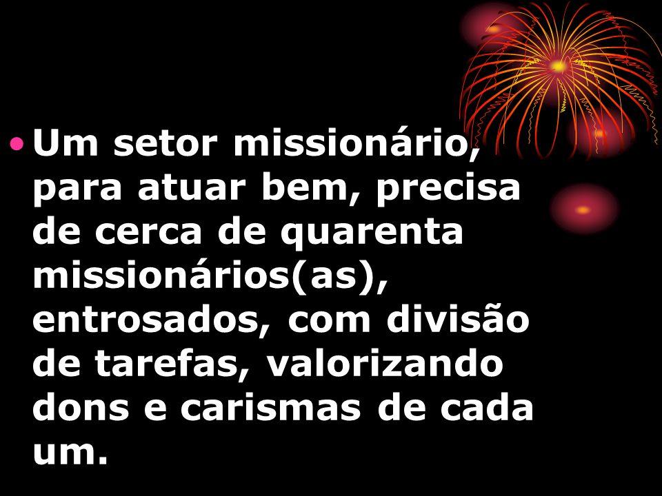 Um setor missionário, para atuar bem, precisa de cerca de quarenta missionários(as), entrosados, com divisão de tarefas, valorizando dons e carismas de cada um.