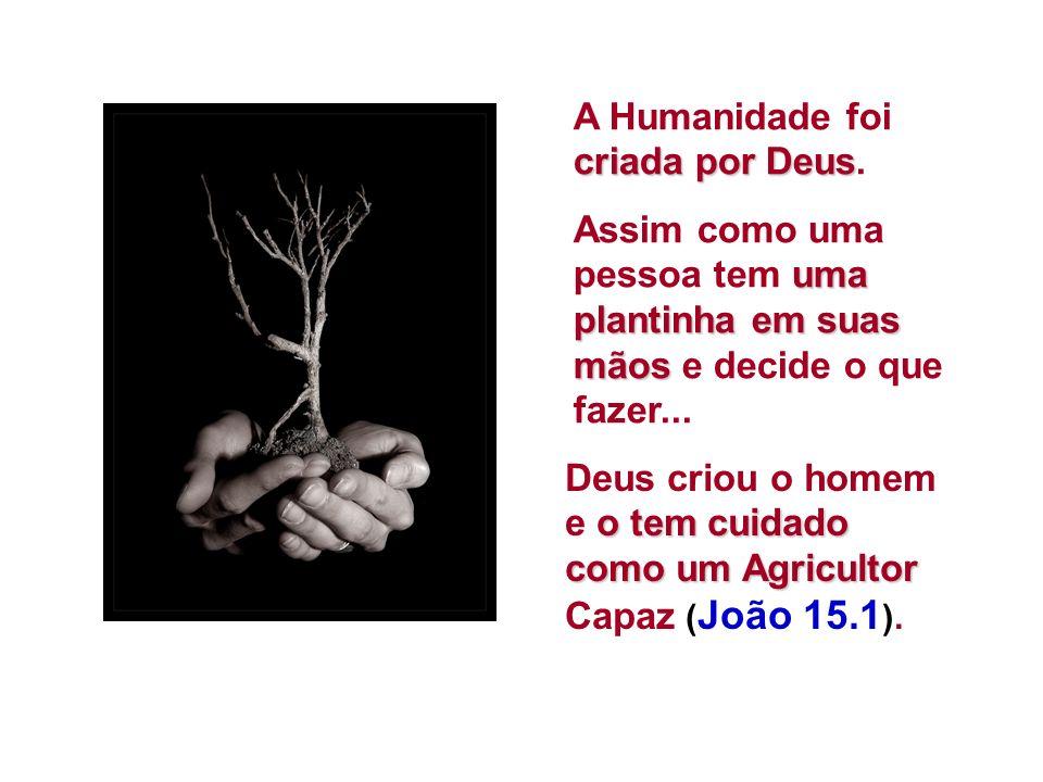 criada por Deus A Humanidade foi criada por Deus.