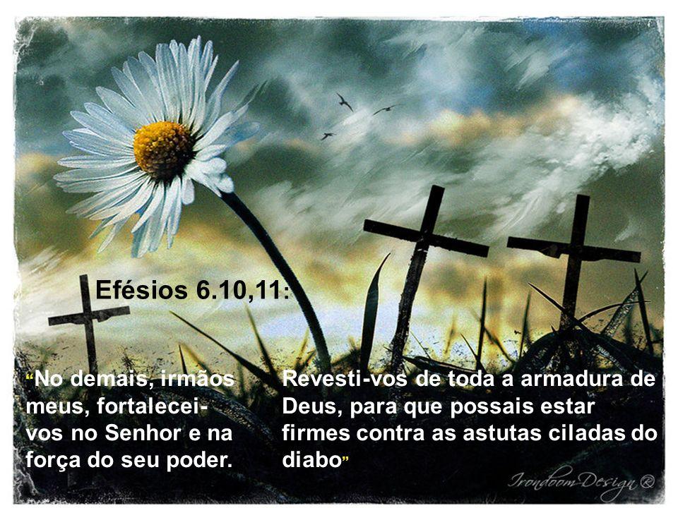 Efésios 6.10,11 : Revesti-vos de toda a armadura de Deus, para que possais estar firmes contra as astutas ciladas do diabo No demais, irmãos meus, for