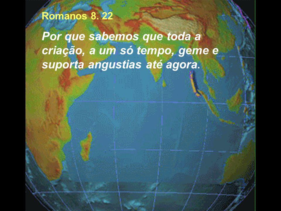Romanos 8. 22 Por que sabemos que toda a criação, a um só tempo, geme e suporta angustias até agora.