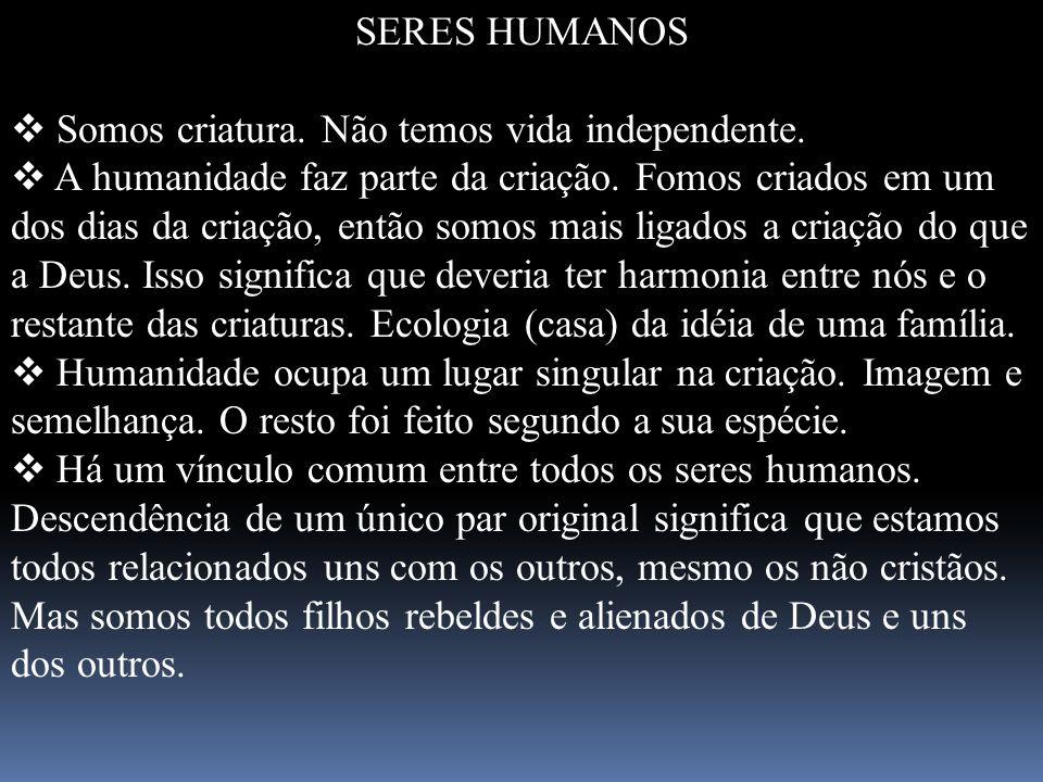 SERES HUMANOS Somos criatura. Não temos vida independente. A humanidade faz parte da criação. Fomos criados em um dos dias da criação, então somos mai