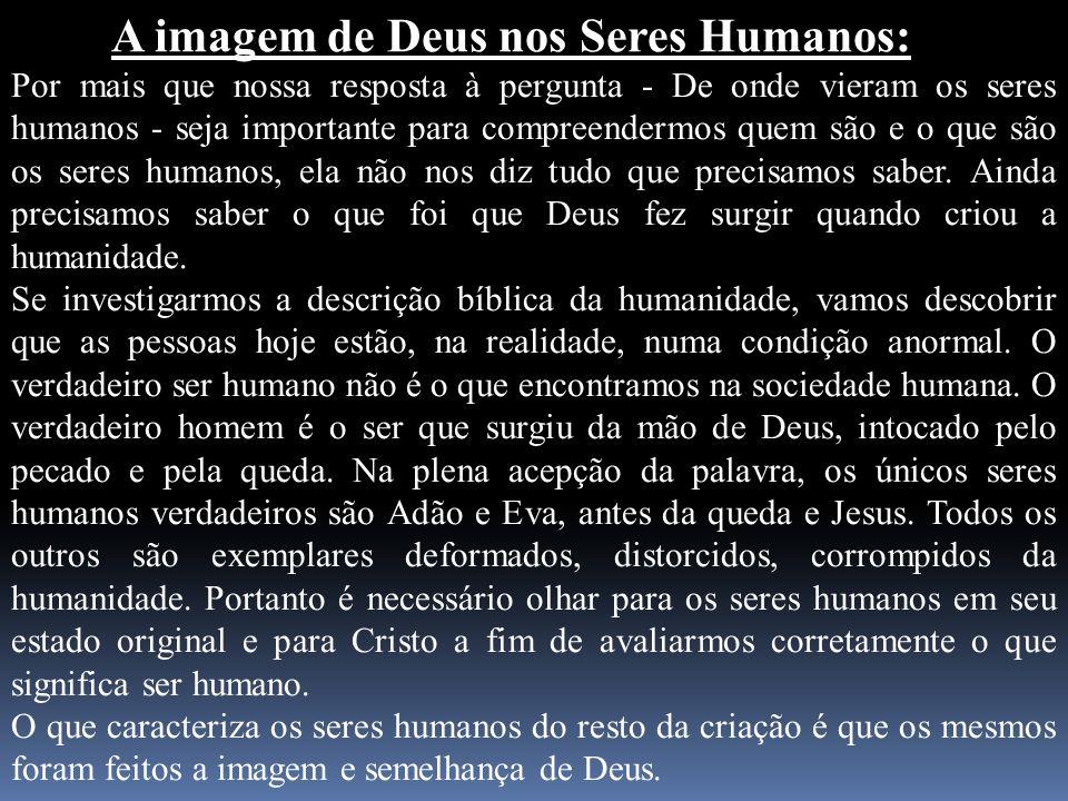 A imagem de Deus nos Seres Humanos: Por mais que nossa resposta à pergunta - De onde vieram os seres humanos - seja importante para compreendermos que