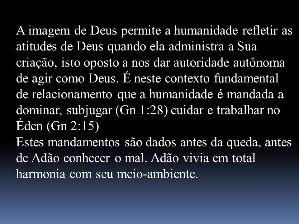A imagem de Deus permite a humanidade refletir as atitudes de Deus quando ela administra a Sua criação, isto oposto a nos dar autoridade autônoma de a