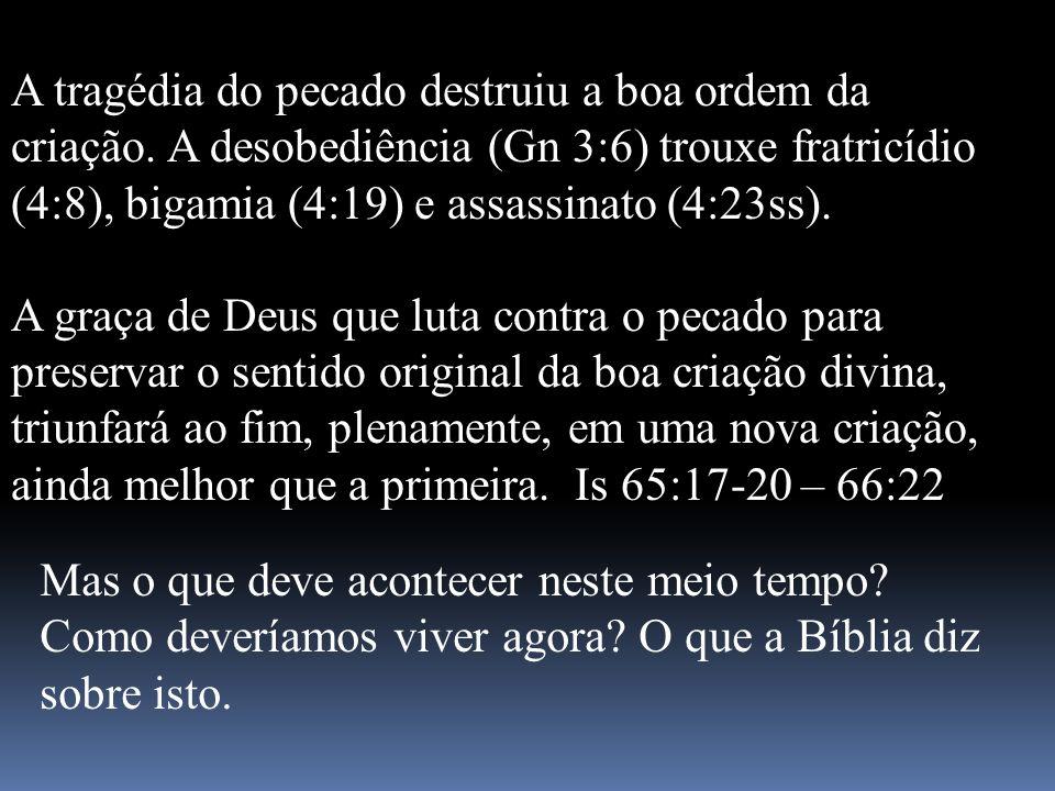 A tragédia do pecado destruiu a boa ordem da criação. A desobediência (Gn 3:6) trouxe fratricídio (4:8), bigamia (4:19) e assassinato (4:23ss). A graç