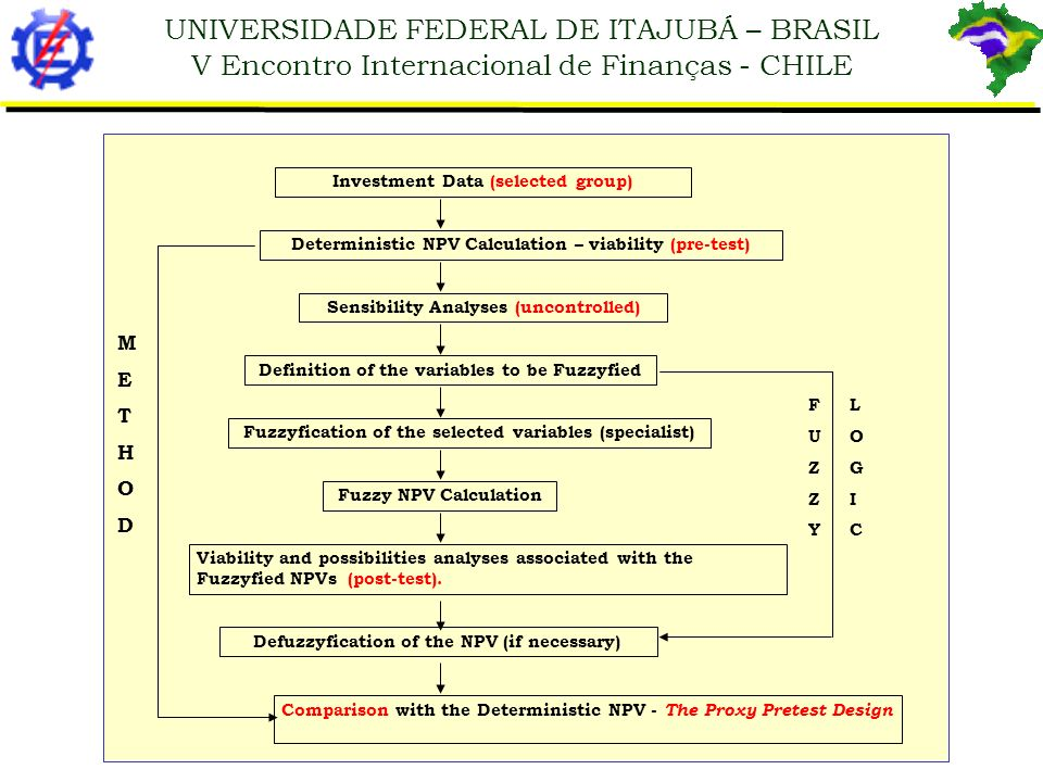 UNIVERSIDADE FEDERAL DE ITAJUBÁ – BRASIL V Encontro Internacional de Finanças - CHILE Investment Data (selected group) Deterministic NPV Calculation –
