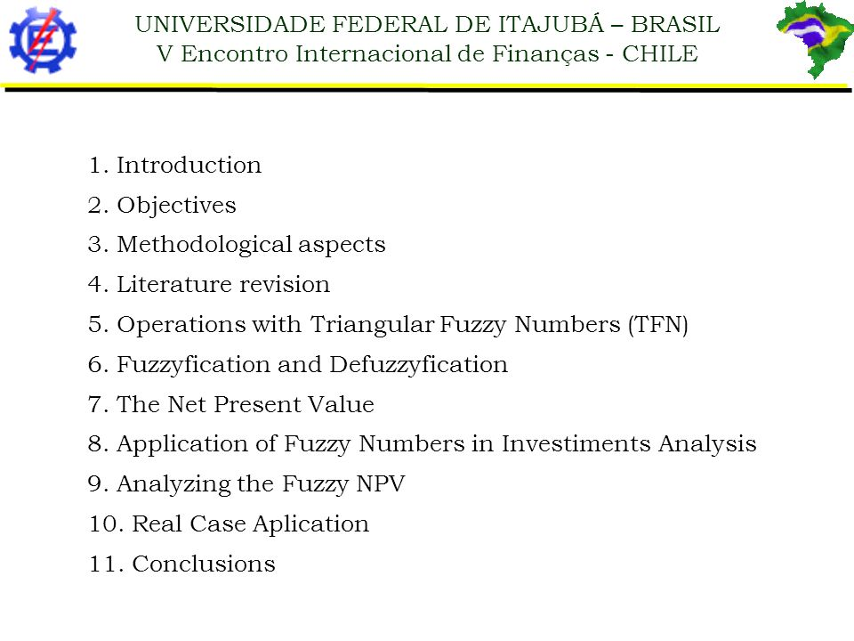UNIVERSIDADE FEDERAL DE ITAJUBÁ – BRASIL V Encontro Internacional de Finanças - CHILE 1. Introduction 2. Objectives 3. Methodological aspects 4. Liter