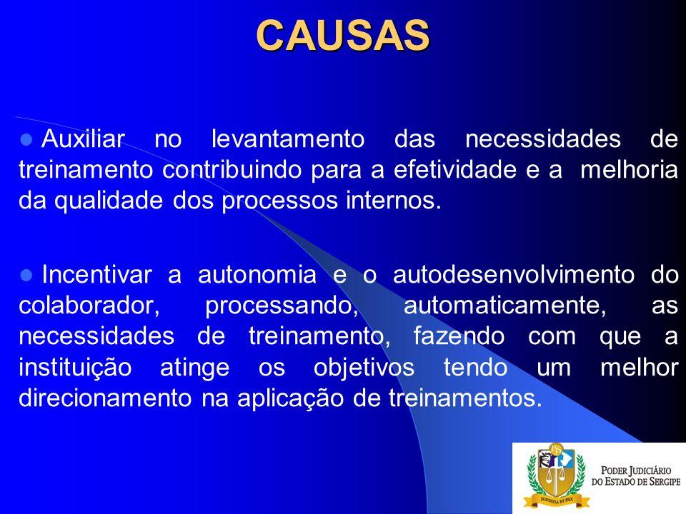 CAUSAS Auxiliar no levantamento das necessidades de treinamento contribuindo para a efetividade e a melhoria da qualidade dos processos internos. Ince