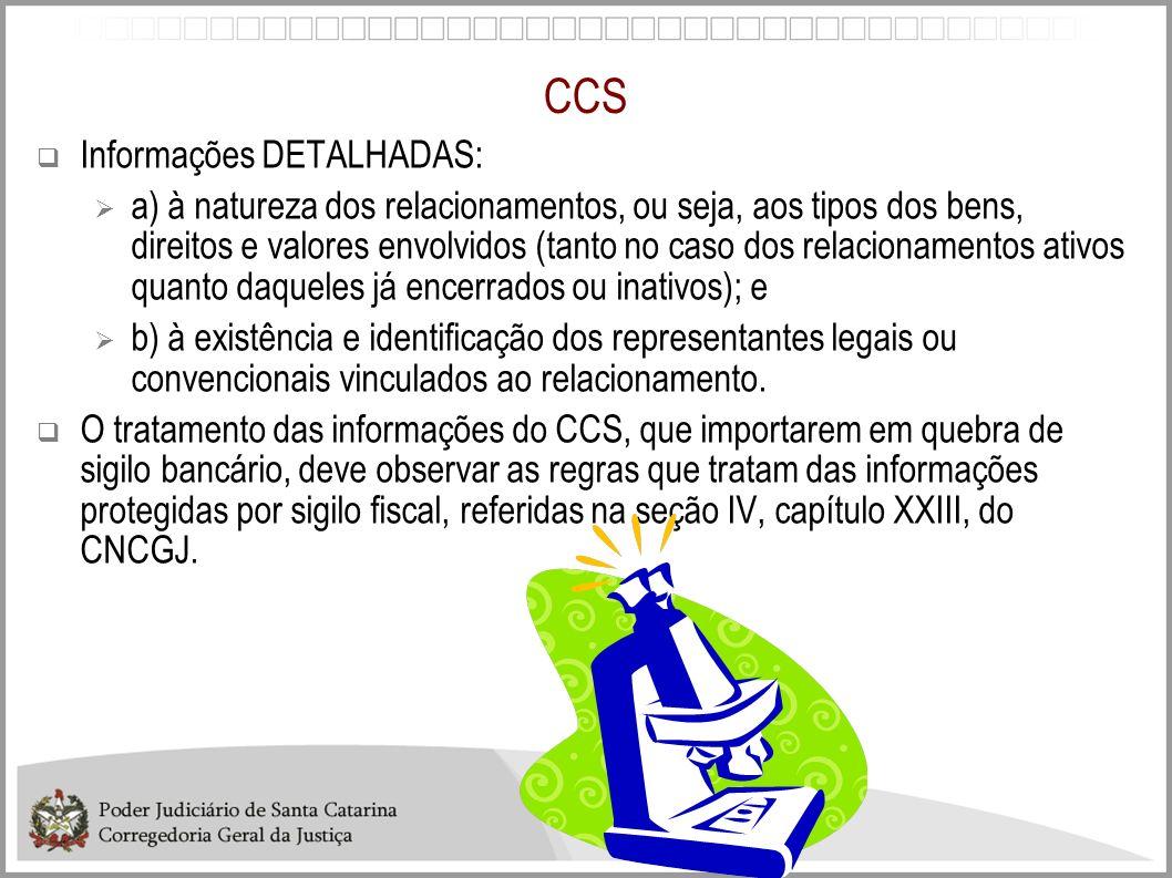 CCS Informações DETALHADAS: a) à natureza dos relacionamentos, ou seja, aos tipos dos bens, direitos e valores envolvidos (tanto no caso dos relaciona