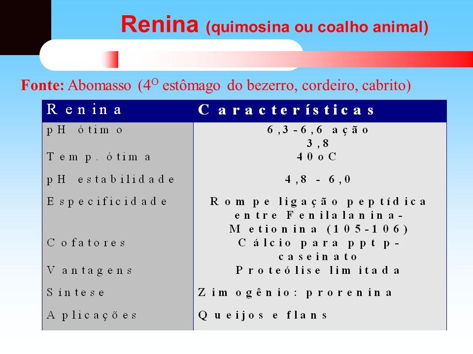 Renina (quimosina ou coalho animal) Fonte: Abomasso (4 O estômago do bezerro, cordeiro, cabrito)