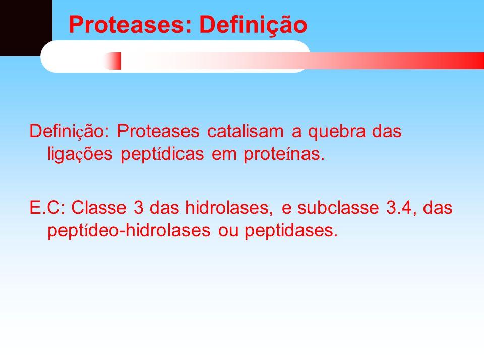 Classificação das proteases: FONTE: vegetais, animais ou microbianas – Presentes no alimento – Excretadas por microrganismos presentes nos alimentos – Adicionadas como coadjuvantes de processo AÇÃO DO SÍTIO CATALÍTICO: – Endopeptidases ouExopeptidases – Proteólise Limitada ou Ilimitada NATUREZA DO SÍTIO CATALÍTICO: Serina Cisteína Metaloproteases Aspartico proteases