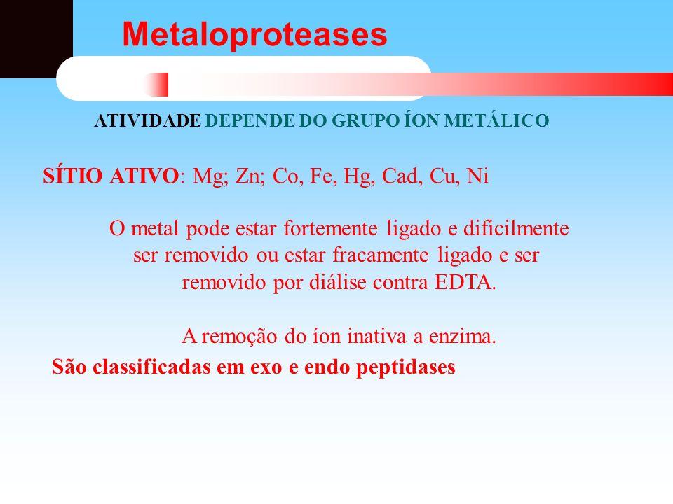 Metaloproteases ATIVIDADE DEPENDE DO GRUPO ÍON METÁLICO SÍTIO ATIVO: Mg; Zn; Co, Fe, Hg, Cad, Cu, Ni O metal pode estar fortemente ligado e dificilmen