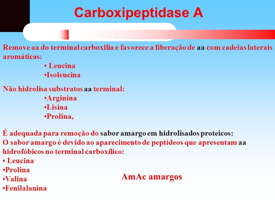 Carboxipeptidase A Remove aa do terminal carboxilia e favorece a liberação de aa com cadeias laterais aromáticas: Leucina Isoleucina Não hidrolisa sub