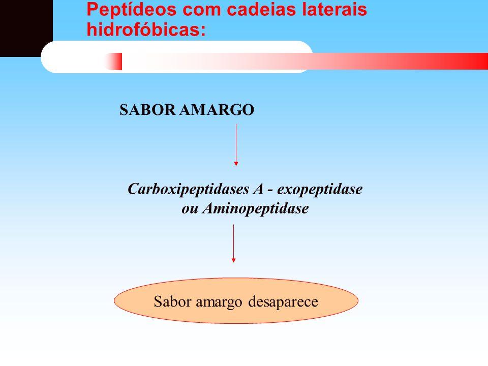 Peptídeos com cadeias laterais hidrofóbicas: Carboxipeptidases A - exopeptidase ou Aminopeptidase Sabor amargo desaparece SABOR AMARGO