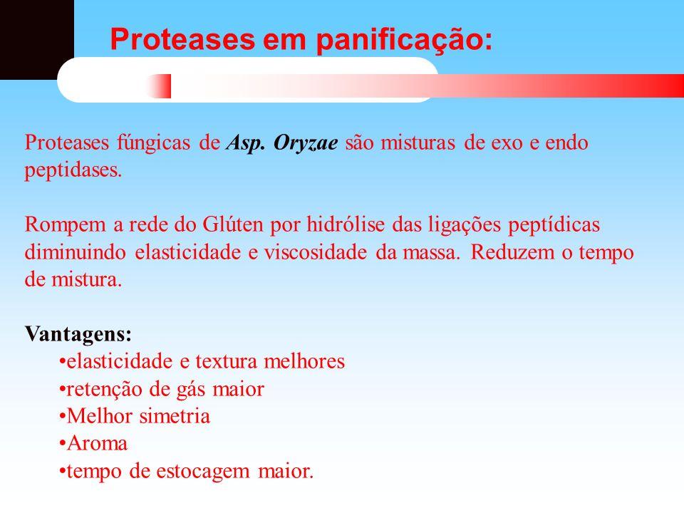 Proteases em panificação: Proteases fúngicas de Asp. Oryzae são misturas de exo e endo peptidases. Rompem a rede do Glúten por hidrólise das ligações
