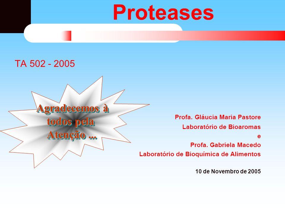 Proteases TA 502 - 2005 Profa. Gláucia Maria Pastore Laboratório de Bioaromas e Profa. Gabriela Macedo Laboratório de Bioquímica de Alimentos 10 de No