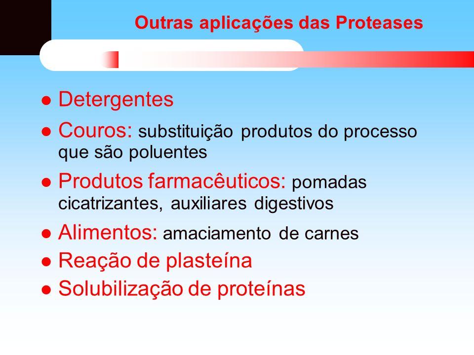 Outras aplicações das Proteases Detergentes Couros: substituição produtos do processo que são poluentes Produtos farmacêuticos: pomadas cicatrizantes,