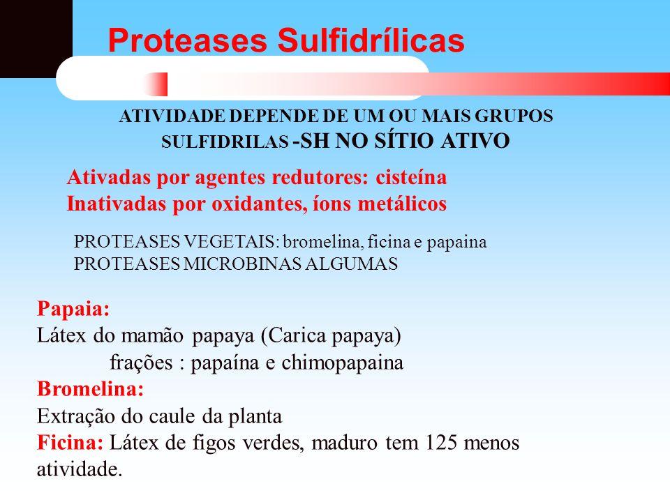 Proteases em panificação As propriedades reológicas da massa de farinha de trigo são devidas às proteínas do Glúten.