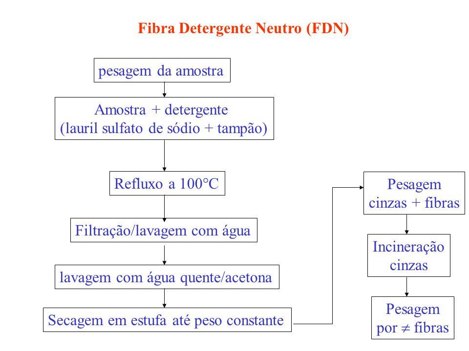 pesagem da amostra Amostra + detergente (lauril sulfato de sódio + tampão) Refluxo a 100 C Filtração/lavagem com água lavagem com água quente/acetona