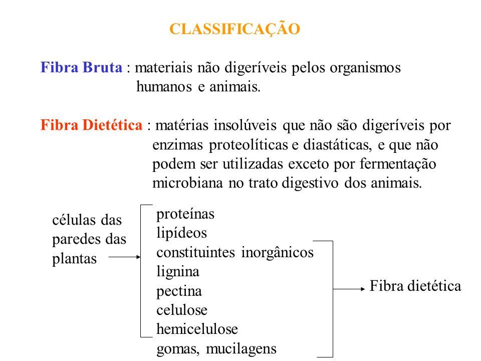 CLASSIFICAÇÃO Fibra Bruta : materiais não digeríveis pelos organismos humanos e animais. Fibra Dietética : matérias insolúveis que não são digeríveis