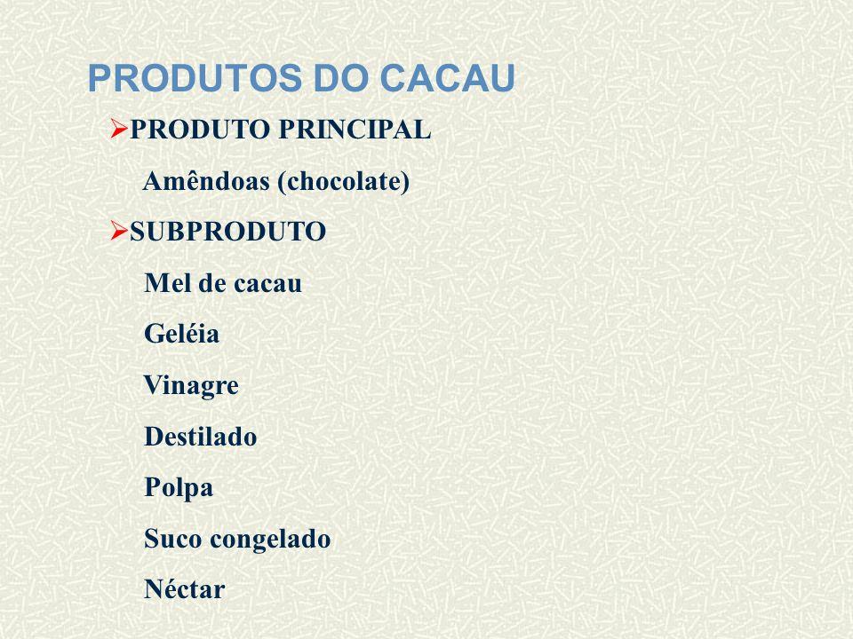 PRINCIPAIS PRAGAS DO CACAU PODRIDÃO PARDA (Phythophthora palmivora) Fungo que provoca manchas escuras que se propagam por todo o fruto.
