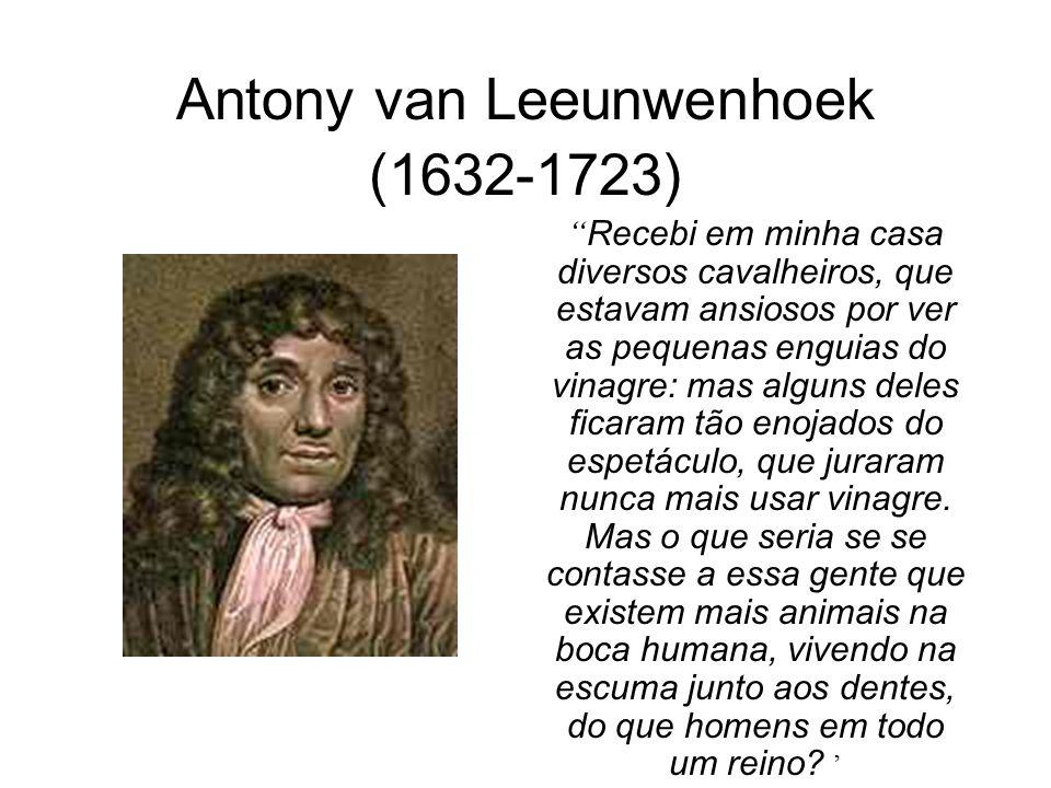 Antony van Leeunwenhoek (1632-1723) Recebi em minha casa diversos cavalheiros, que estavam ansiosos por ver as pequenas enguias do vinagre: mas alguns deles ficaram tão enojados do espetáculo, que juraram nunca mais usar vinagre.
