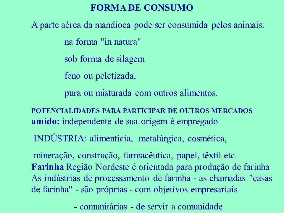 FORMA DE CONSUMO A parte aérea da mandioca pode ser consumida pelos animais: na forma