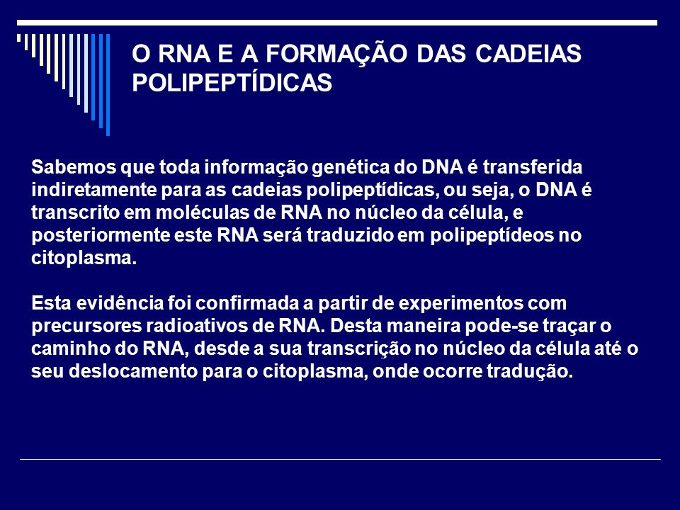 O RNA E A FORMAÇÃO DAS CADEIAS POLIPEPTÍDICAS Sabemos que toda informação genética do DNA é transferida indiretamente para as cadeias polipeptídicas,