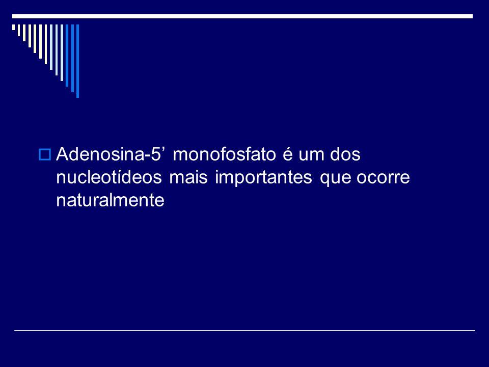 Adenosina-5 monofosfato é um dos nucleotídeos mais importantes que ocorre naturalmente