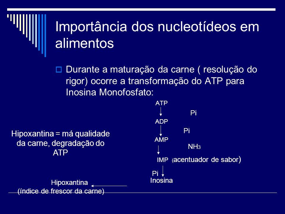 Importância dos nucleotídeos em alimentos Durante a maturação da carne ( resolução do rigor) ocorre a transformação do ATP para Inosina Monofosfato: A