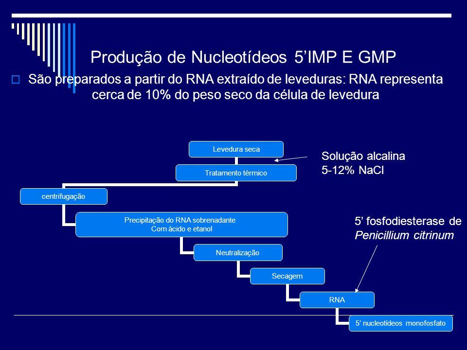 Produção de Nucleotídeos 5IMP E GMP São preparados a partir do RNA extraído de leveduras: RNA representa cerca de 10% do peso seco da célula de levedu