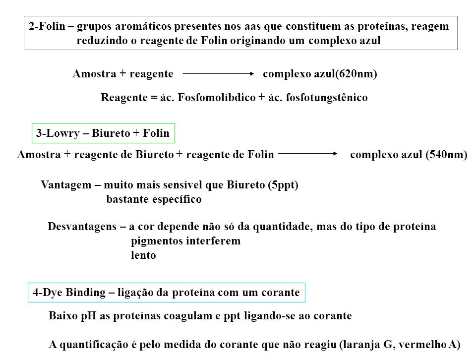2-Folin – grupos aromáticos presentes nos aas que constituem as proteínas, reagem reduzindo o reagente de Folin originando um complexo azul Amostra +