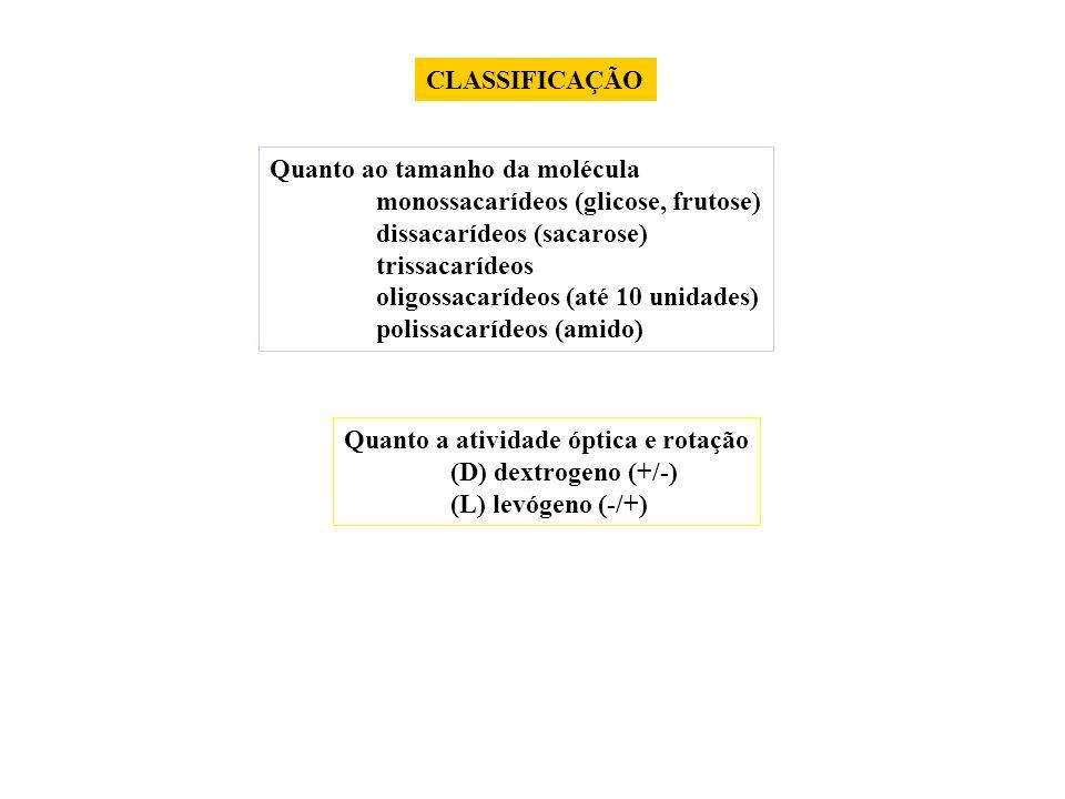 CLASSIFICAÇÃO Quanto ao tamanho da molécula monossacarídeos (glicose, frutose) dissacarídeos (sacarose) trissacarídeos oligossacarídeos (até 10 unidad