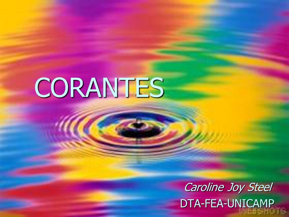 CORANTES Caroline Joy Steel DTA-FEA-UNICAMP