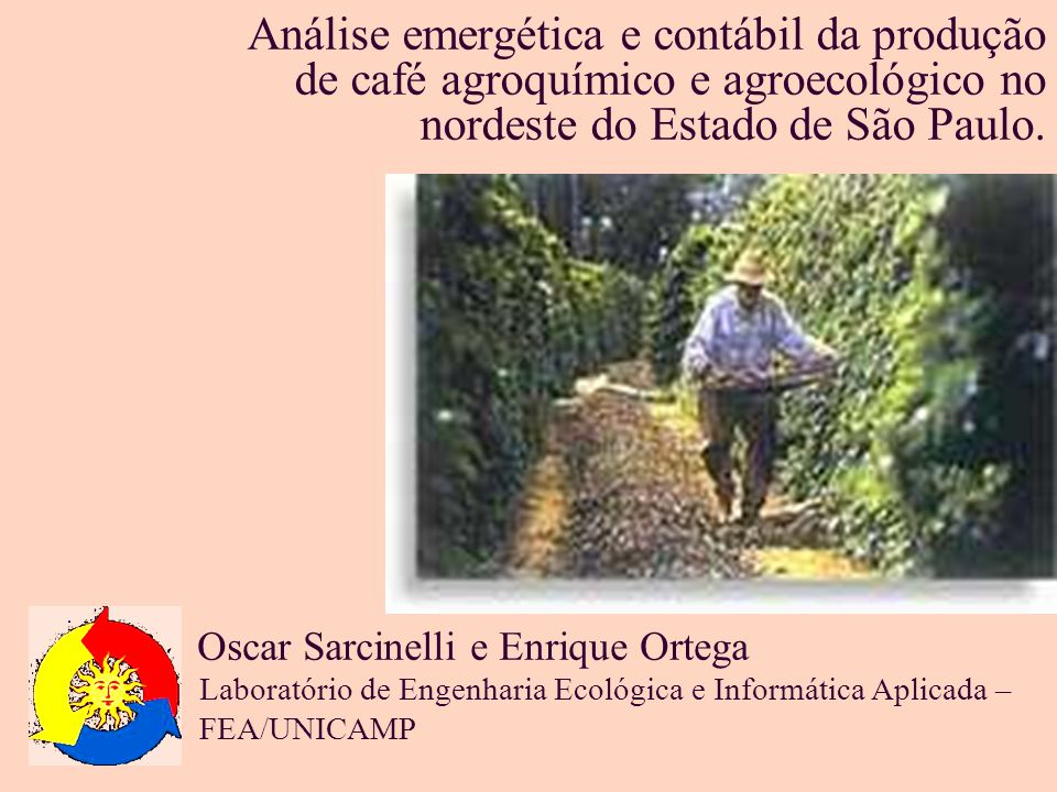 Análise emergética e contábil da produção de café agroquímico e agroecológico no nordeste do Estado de São Paulo.