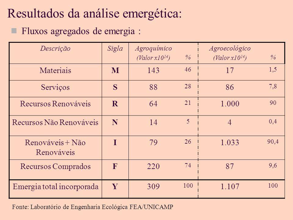 Resultados da análise emergética: Fluxos agregados de emergia : DescriçãoSigla Agroquímico (Valor x10 14 ) % Agroecológico (Valor x10 14 ) % MateriaisM143 46 17 1,5 ServiçosS88 28 86 7,8 Recursos RenováveisR64 21 1.000 90 Recursos Não RenováveisN14 5 4 0,4 Renováveis + Não Renováveis I79 26 1.033 90,4 Recursos CompradosF220 74 87 9,6 Emergia total incorporadaY309 100 1.107 100 Fonte: Laboratório de Engenharia Ecológica FEA/UNICAMP