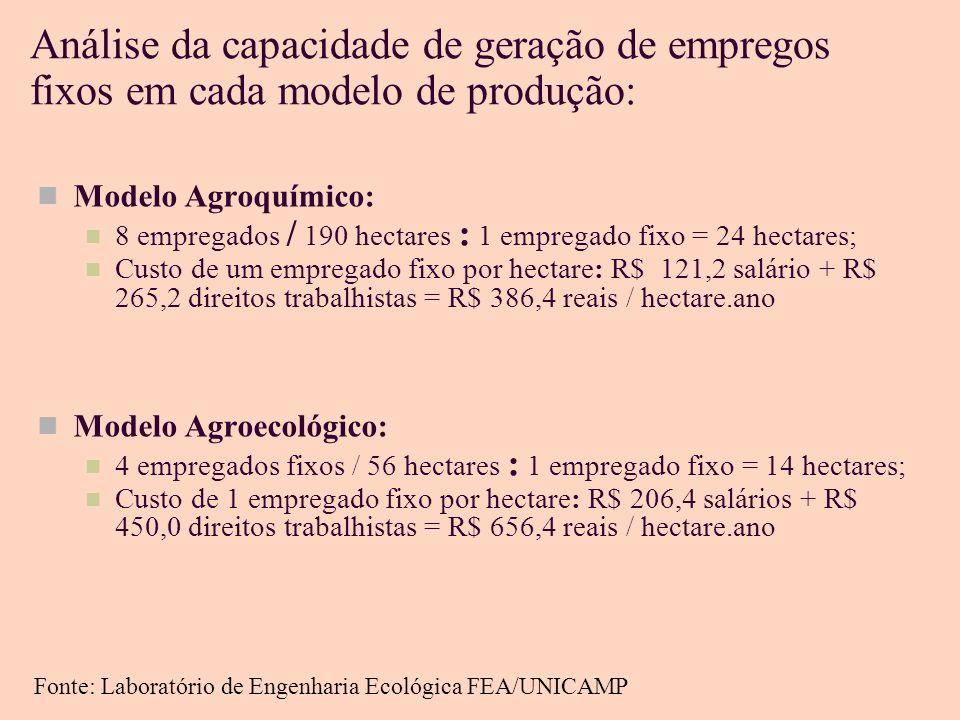Análise da capacidade de geração de empregos fixos em cada modelo de produção: Modelo Agroquímico: 8 empregados / 190 hectares : 1 empregado fixo = 24 hectares; Custo de um empregado fixo por hectare: R$ 121,2 salário + R$ 265,2 direitos trabalhistas = R$ 386,4 reais / hectare.ano Modelo Agroecológico: 4 empregados fixos / 56 hectares : 1 empregado fixo = 14 hectares; Custo de 1 empregado fixo por hectare: R$ 206,4 salários + R$ 450,0 direitos trabalhistas = R$ 656,4 reais / hectare.ano Fonte: Laboratório de Engenharia Ecológica FEA/UNICAMP
