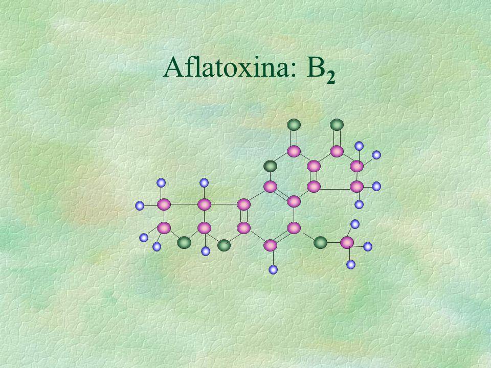 Aflatoxina: B 2