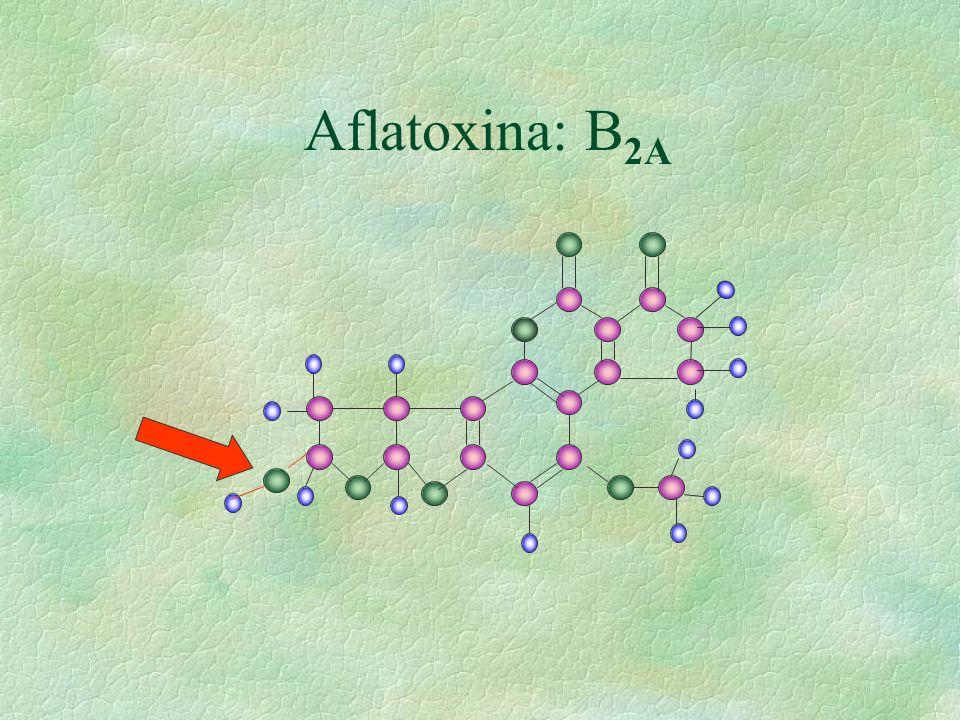 Aflatoxina: B 2A