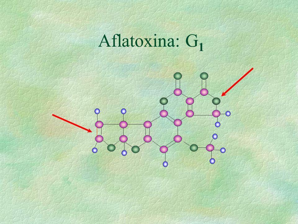 Aflatoxina: G 1