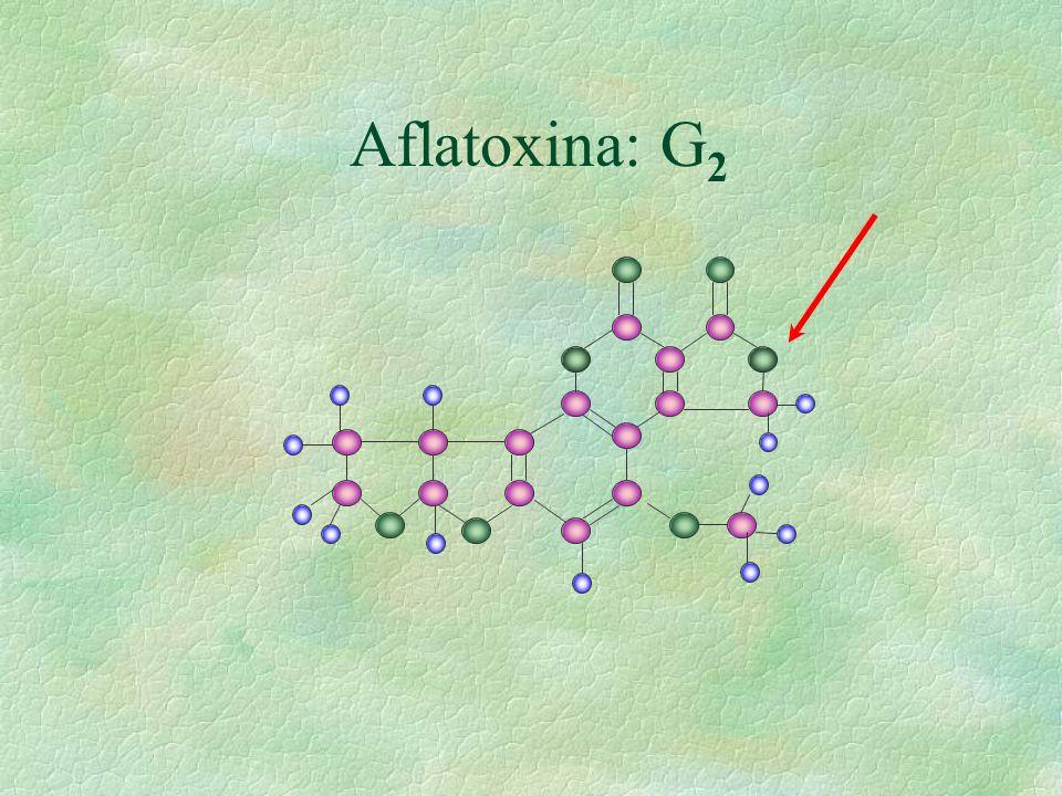 Aflatoxina: G 2