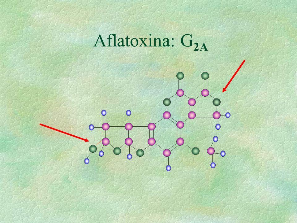 Aflatoxina: G 2A