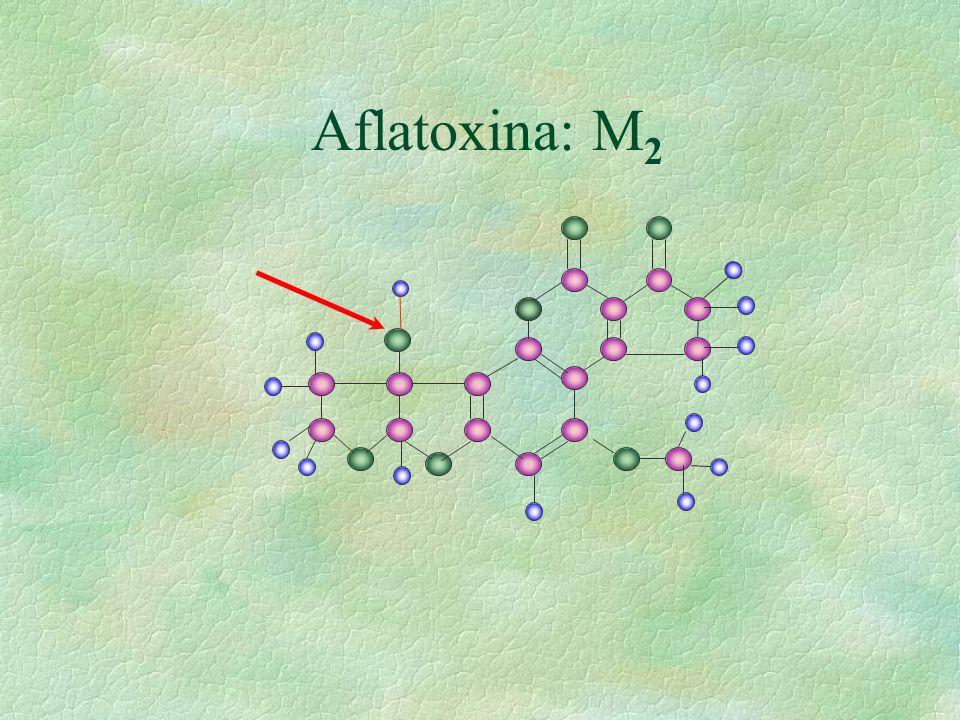 Aflatoxina: M 2