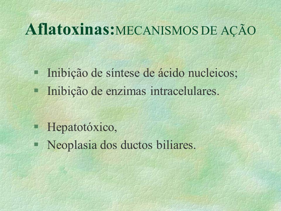 Aflatoxinas: MECANISMOS DE AÇÃO § Inibição de síntese de ácido nucleicos; § Inibição de enzimas intracelulares. § Hepatotóxico, § Neoplasia dos ductos