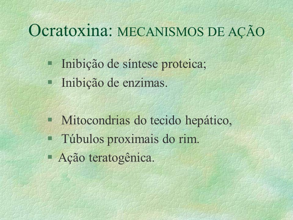 Ocratoxina: MECANISMOS DE AÇÃO § Inibição de síntese proteica; § Inibição de enzimas. § Mitocondrias do tecido hepático, § Túbulos proximais do rim. §