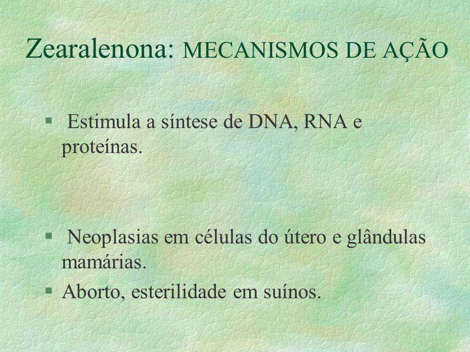 Zearalenona: MECANISMOS DE AÇÃO § Estimula a síntese de DNA, RNA e proteínas. § Neoplasias em células do útero e glândulas mamárias. §Aborto, esterili