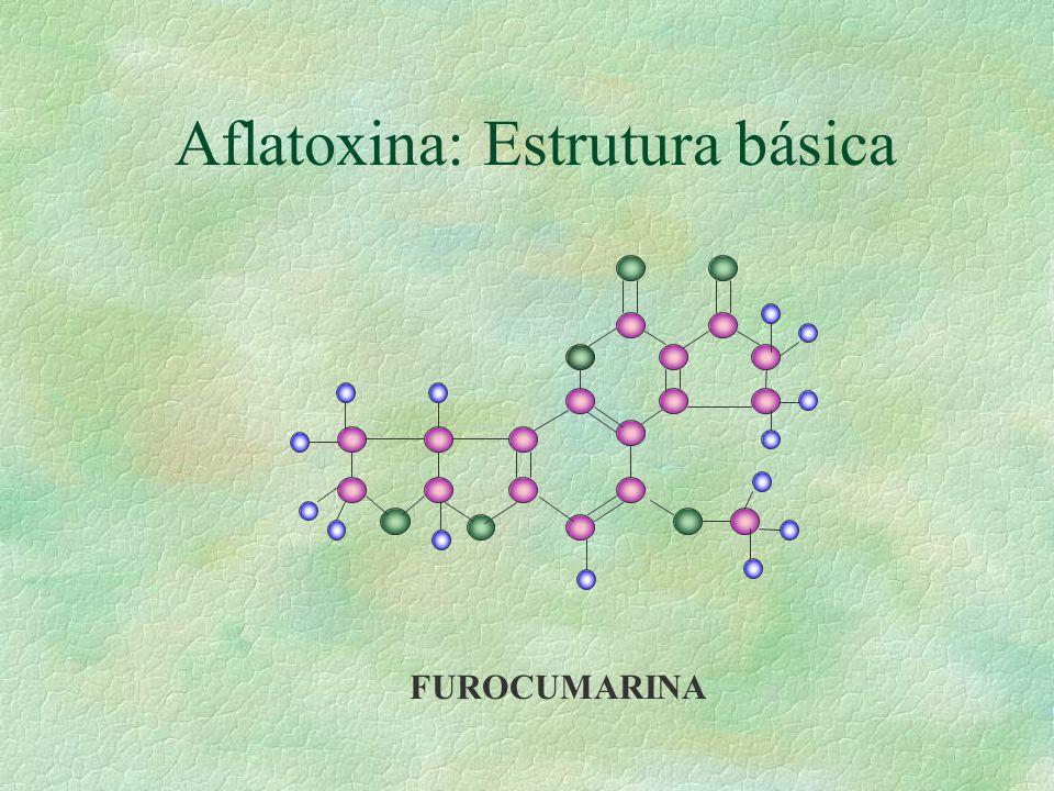 Ocratoxina: Estrutura básica R