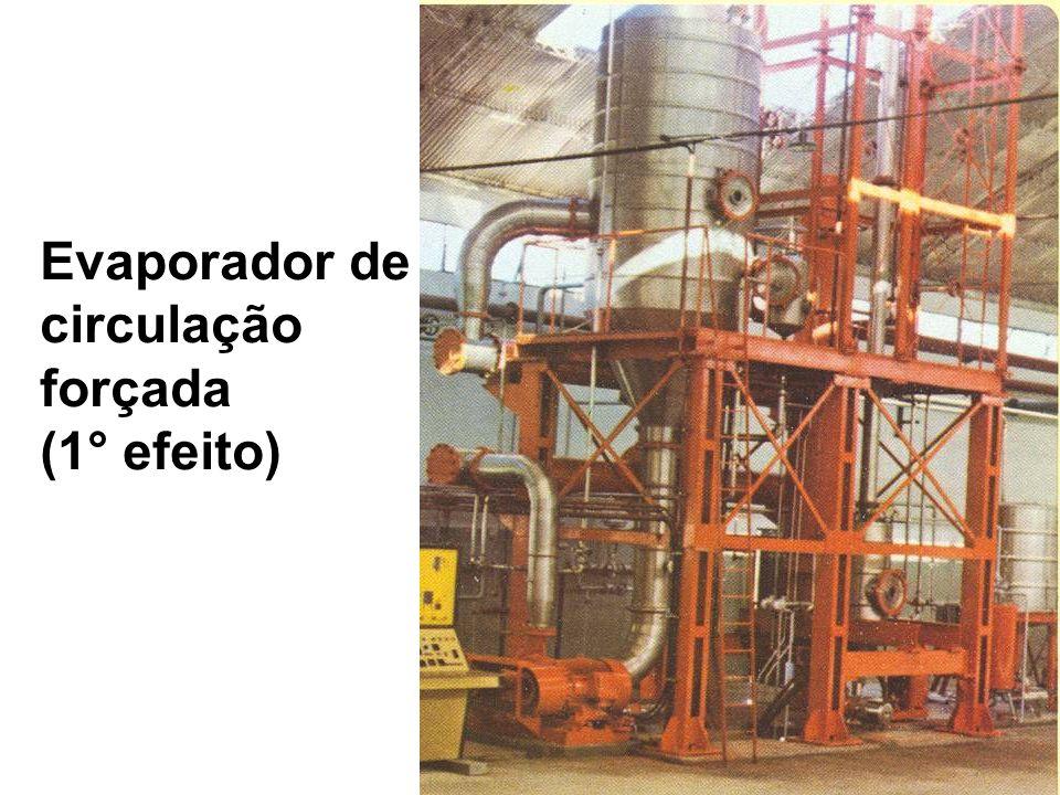 Evaporador de circulação forçada (1° efeito)